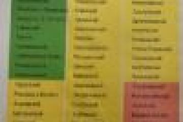 """Рөстәм Миңнеханов район башлыкларына: """"Рейтинг – ул сезнең команданың эш нәтиҗәс"""