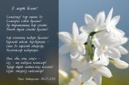 8 март - Халыкара хатын-кызлар көне белән!!!