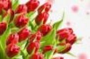 Халыкара хатын-кызлар көне – 8 Март белән