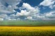 Авыл хуҗалыгы һәм азык-төлек промышленносте хезмәтчәннәре тормышын яктырткан про